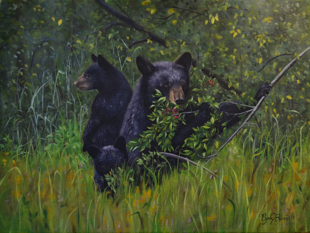 """Pin Cherry Bears"""